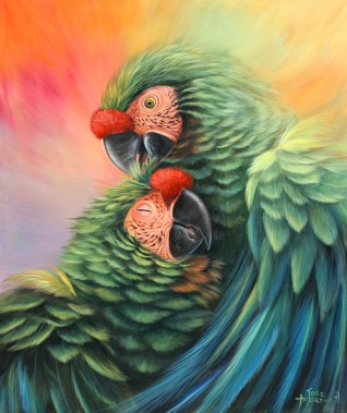 parrots-in-love by José Moreno Aparicio