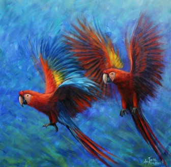 parrots-flying by
