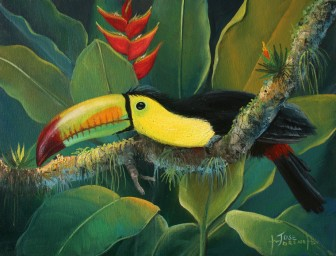 toucan-and-heliconia-plant by