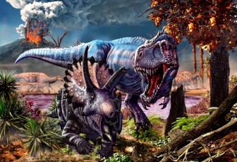 T-rex attacks Triceratops while a herd of Edmontosaurus passes in the background by